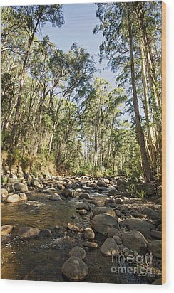Wood Print featuring the photograph Rubicon River by Linda Lees