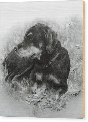 Wood Print featuring the drawing Ruby by Meagan  Visser