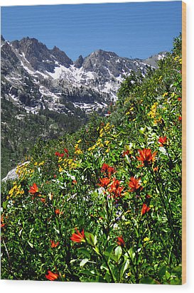 Ruby Mountain Wildflowers - Vertical Wood Print