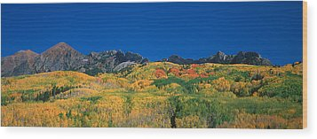 Ruby Range Color Of Fall Wood Print by Dusty Demerson