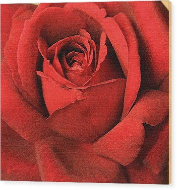 Ruby Rose Wood Print by Marna Edwards Flavell