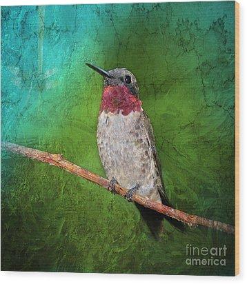 Ruby Throated Hummingbird Wood Print by Betty LaRue