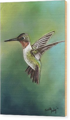 Ruby Throated Hummingbird Wood Print by Charlotte Yealey