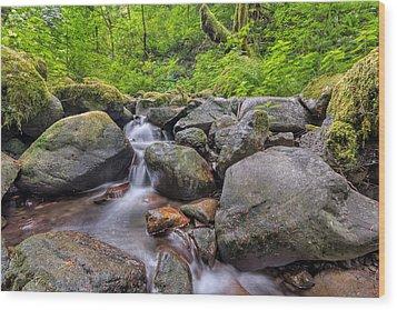 Ruckel Creek Wood Print by David Gn
