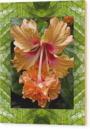 Wood Print featuring the photograph Ruffled Beauty by Bell And Todd
