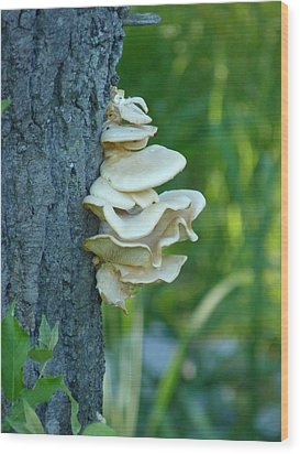 Ruffles On The Tree Wood Print by Jeanette Oberholtzer