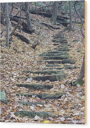 Wood Print featuring the photograph Rugged Path by Alan Raasch