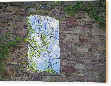Wood Print featuring the photograph Ruin Of A Window - Bridgetown Millhouse  Bucks County Pa by Bill Cannon