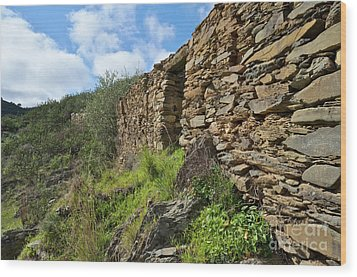 Ruins Of A Schist Cottage In Alentejo Wood Print by Angelo DeVal