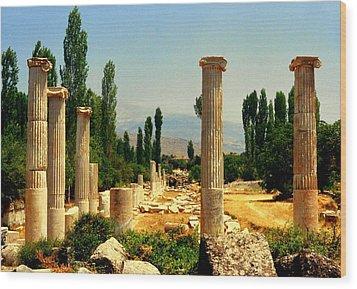Ruins Of  Aphrodisias Wood Print by Lou Ann Bagnall