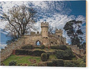 Ruins Of Warwick Wood Print by Laura George