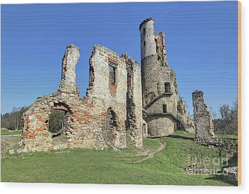 Wood Print featuring the photograph Ruins Of Zviretice Castle by Michal Boubin