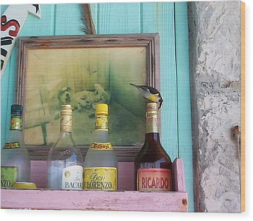 Wood Print featuring the photograph Rum Shack Bananaquit by Mary-Lee Sanders