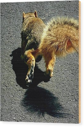 Runaway Fox Squirrel Wood Print by Beth Akerman