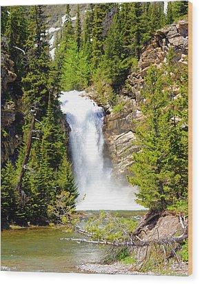 Running Eagle Falls Wood Print by Marty Koch