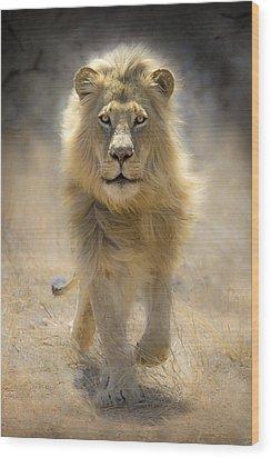 Running Lion Wood Print by Stu  Porter