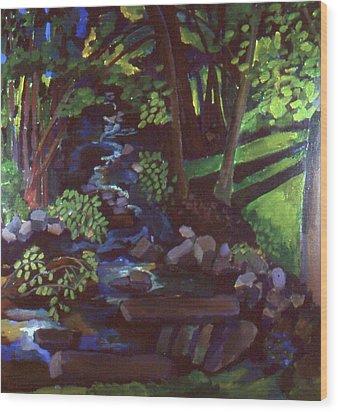 Runoff Stream Wood Print