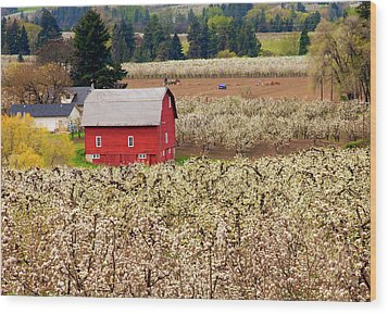 Rural Color Wood Print by Mike  Dawson