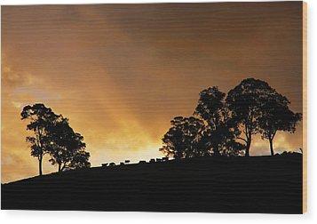 Rural Glory Wood Print by Mike  Dawson