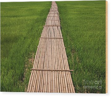 Rural Green Rice Fields And Bamboo Bridge. Wood Print by Tosporn Preede