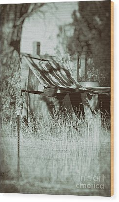 Wood Print featuring the photograph Rural Reminiscence by Linda Lees
