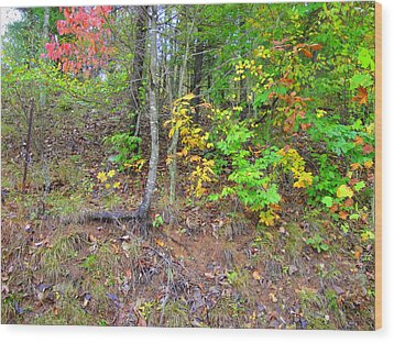 Rural Tyler County Landscape Wood Print by Terry  Wiley