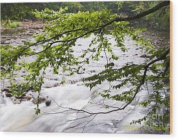 Rushing River Wood Print by Thomas R Fletcher