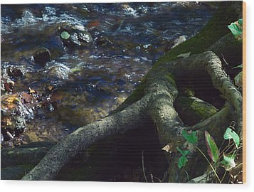 Wood Print featuring the photograph Rushing Waters Of Life by Wanda Brandon