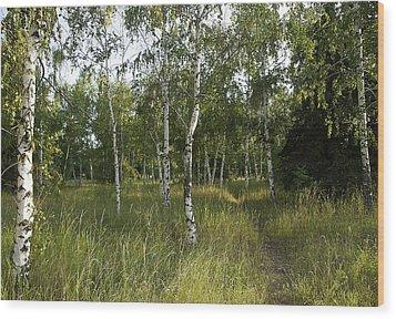 Russia Wood Print by Svetlana Sewell