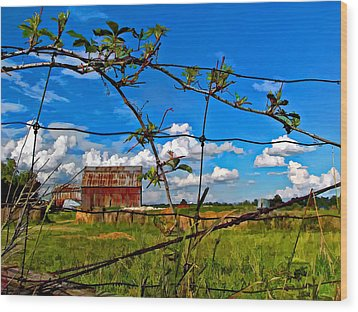 Rustic Frame Paint Wood Print by Steve Harrington