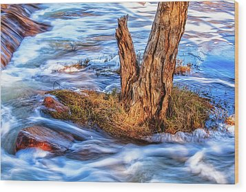 Wood Print featuring the photograph Rustic Island, Noble Falls by Dave Catley
