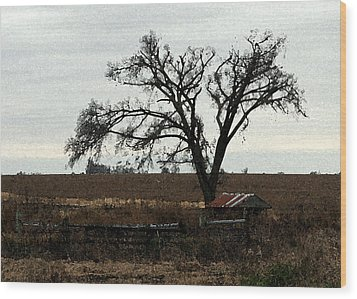 Rustic Wood Print by Rodger Mansfield