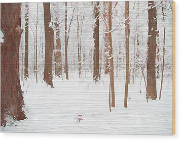 Rustic Winter Forest Wood Print by Dan Sproul