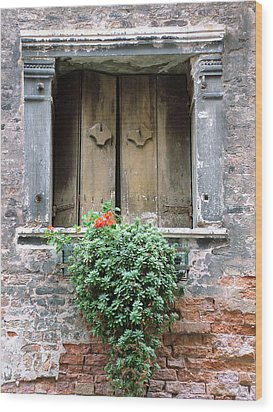 Rustic Wooden Window Shutters Wood Print by Donna Corless