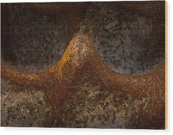 Wood Print featuring the photograph Rustwave by WB Johnston