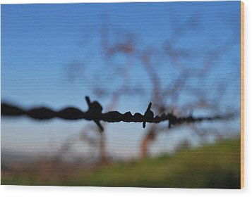 Wood Print featuring the photograph Rusty Gate Rural Tree by Matt Harang