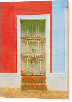 Rusty Iron Door Wood Print by Perry Webster