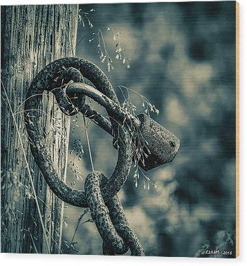 Rusty Lock And Chain Wood Print by Ken Morris