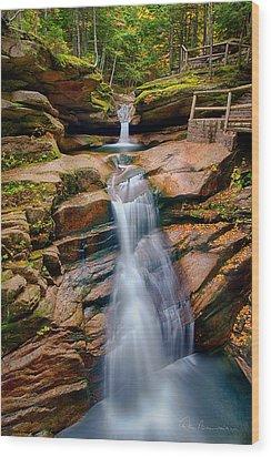 Sabbaday Falls 8896 Wood Print by Dan Beauvais
