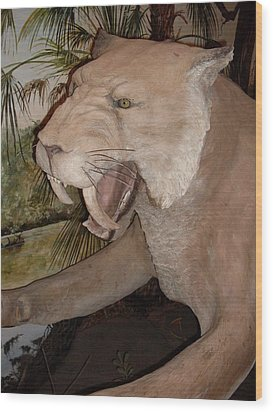 Saber Tooth Tiger Wood Print by Warren Thompson