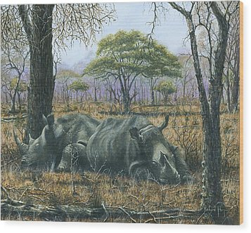 Sabi Sand Siesta Wood Print by Richard Harpum