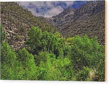 Wood Print featuring the photograph Sabino Canyon H33 by Mark Myhaver