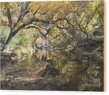 Sabino Canyon In Fall Wood Print