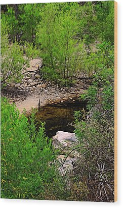 Wood Print featuring the photograph Sabino Canyon Op44 by Mark Myhaver