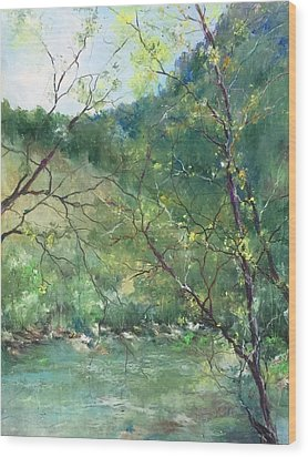 Sabino Canyon Wood Print by Robin Miller-Bookhout