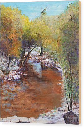 Sabino Canyon Scenes Wood Print