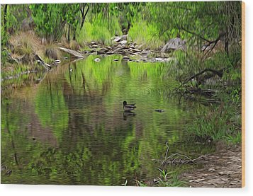 Wood Print featuring the photograph Sabino Reflection Op53 by Mark Myhaver