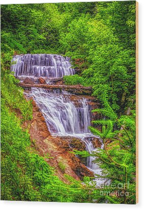 Wood Print featuring the photograph Sable Falls by Nick Zelinsky