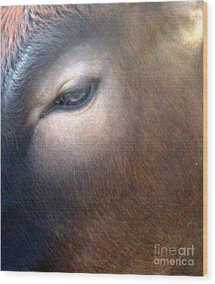Wood Print featuring the photograph Sacred Cow 5 by Randall Weidner