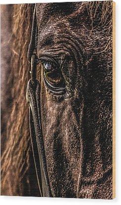 Sad Eyes Wood Print